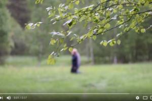 Bergvik Skog – Film – Tvätta Med Björklöv